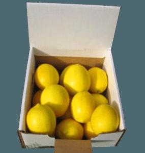 5-lemons-small-web