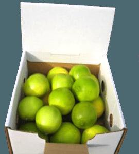 5-limes-small-web