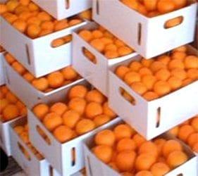 mandarin-box-small-web